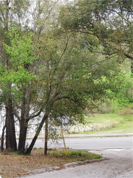 JONES LANE, CLERMONT, FL, 34711
