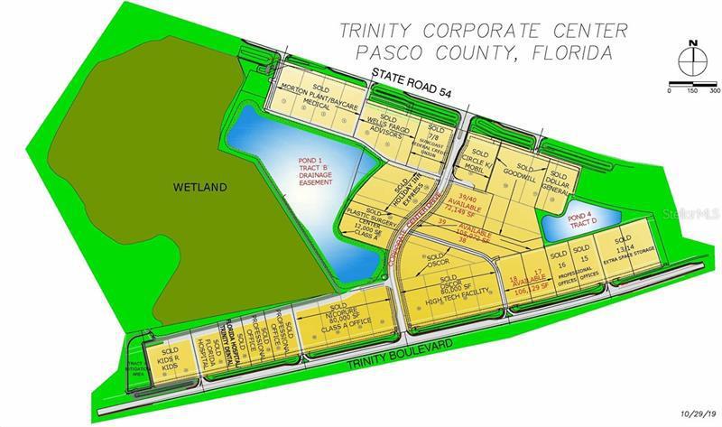 18 TRINITY, ODESSA, FL, 33556
