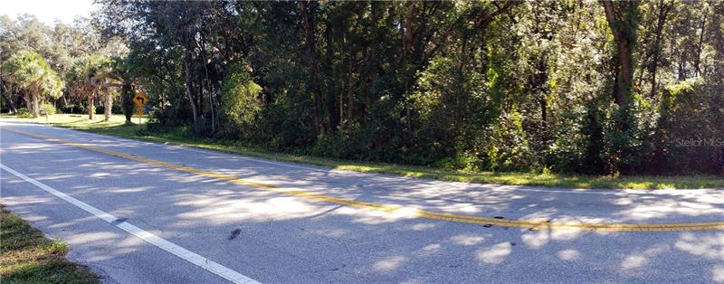 30302 COUNTY ROAD 435, MOUNT PLYMOUTH, FL, 32776