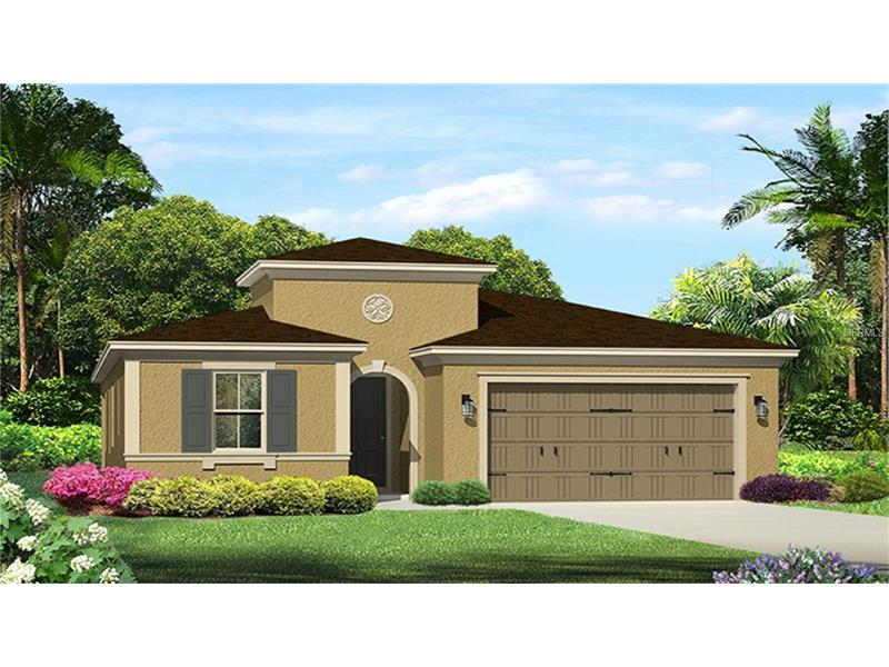 17802  WOODLAND VIEW,  LUTZ, FL