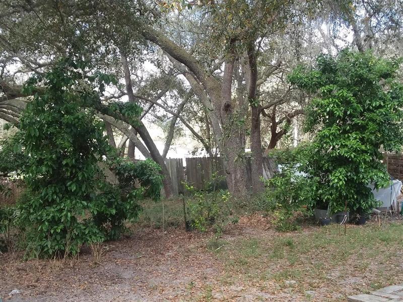 14847 NE 145, FORT MCCOY, FL, 32134