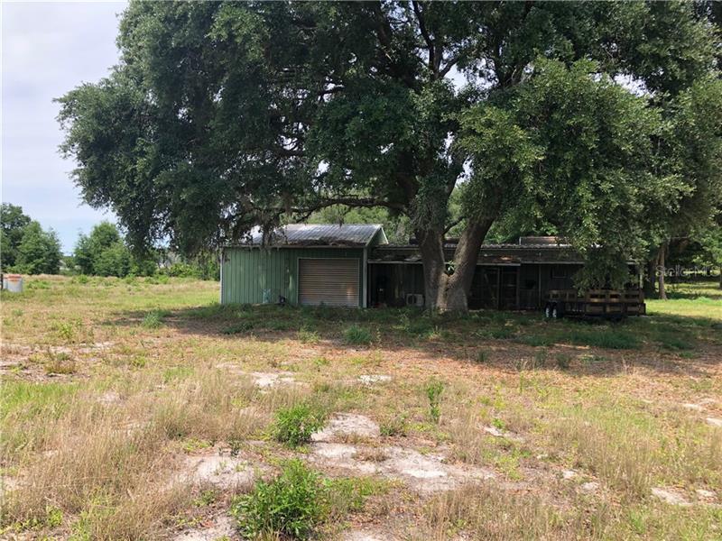 BLUE SMOKE, CLERMONT, FL, 34715