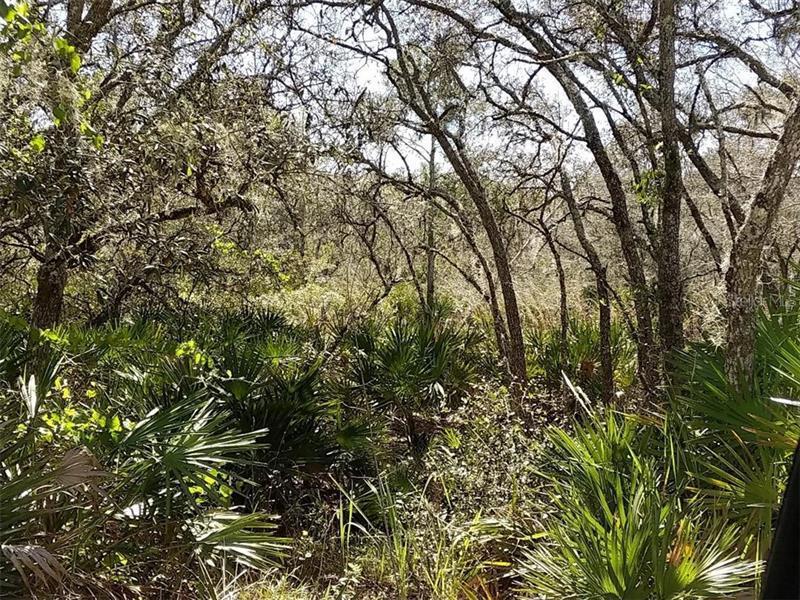 540 MOCKINGBIRD, FROSTPROOF, FL, 33843