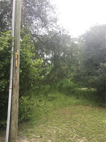 31709 HILLCREST, EUSTIS, FL, 32736