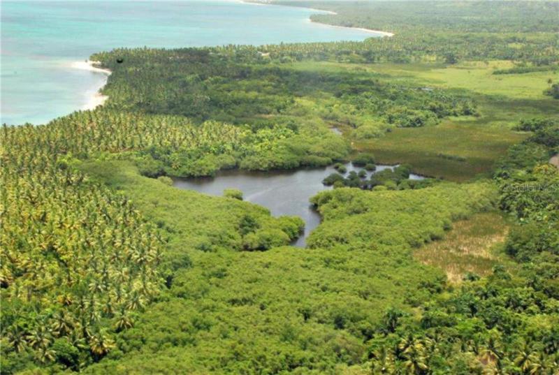 HWY 5, MAGANTE DOMINICAN REPUBLI, FL, 56000