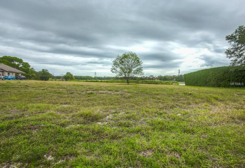 ARROWTREE, CLERMONT, FL, 34711