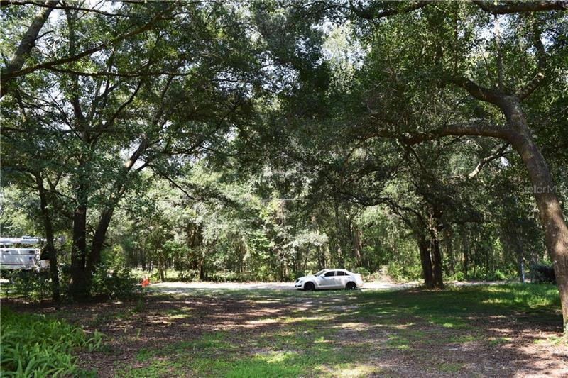 DUFFERIN, MOUNT PLYMOUTH, FL, 32776