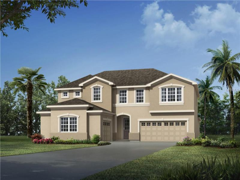 3121 RIVER SPRINGS, CLERMONT, FL, 34711