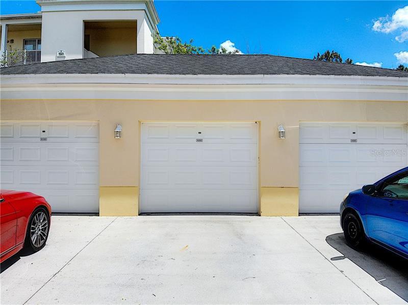 1501 NORTHERN HARRIER 203, REUNION, FL, 34747