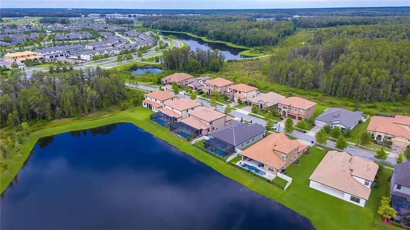 12824 BERRYPICK, ODESSA, FL, 33556