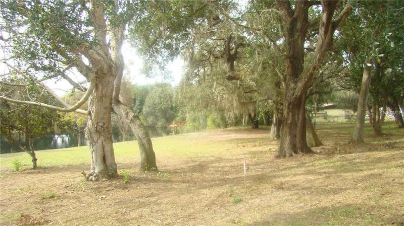 BASIN, CLERMONT, FL, 34715