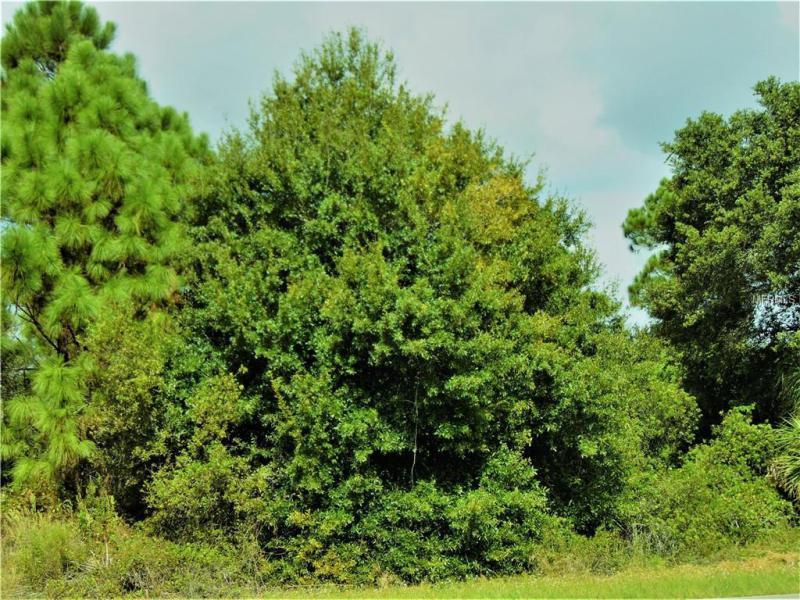 149 MACARTHUR, PORT CHARLOTTE, FL, 33954
