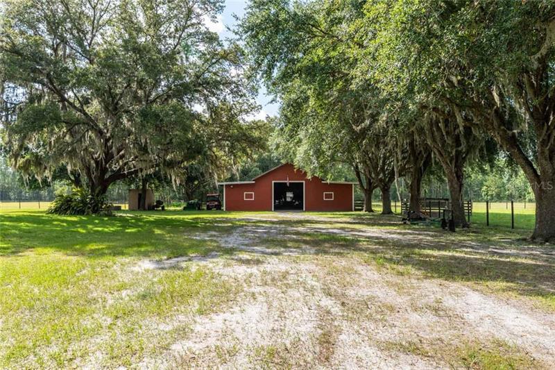 6813 S FORK RANCH, CLERMONT, FL, 34714