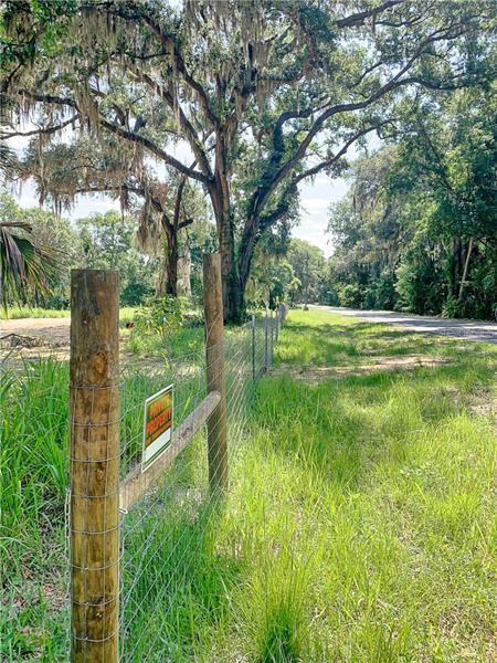 TROUSDALE, CLERMONT, FL, 34711