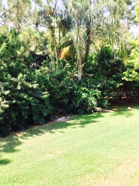 13217 ROYAL GEORGE, ODESSA, FL, 33556