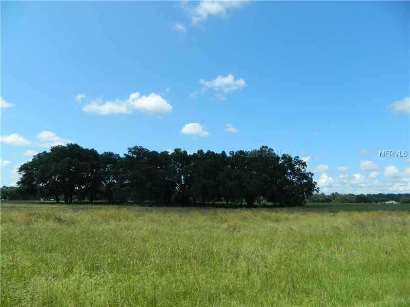 8684 COUNTY ROAD 209, WILDWOOD, FL, 34785