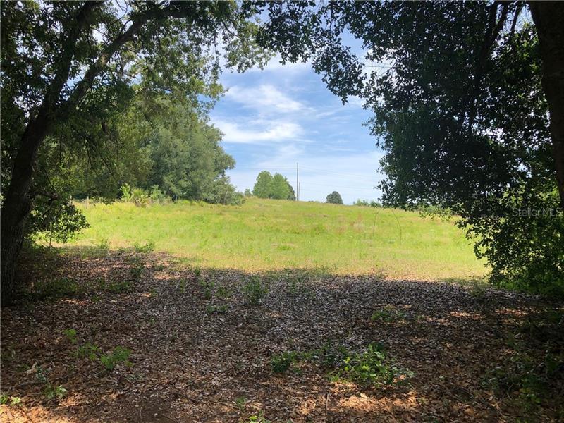 20121 S BUCKHILL, CLERMONT, FL, 34715