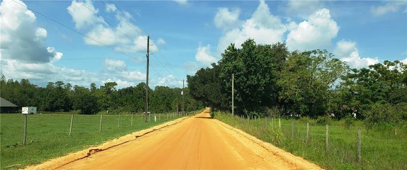 OTT WILLIAMS, CLERMONT, FL, 34714