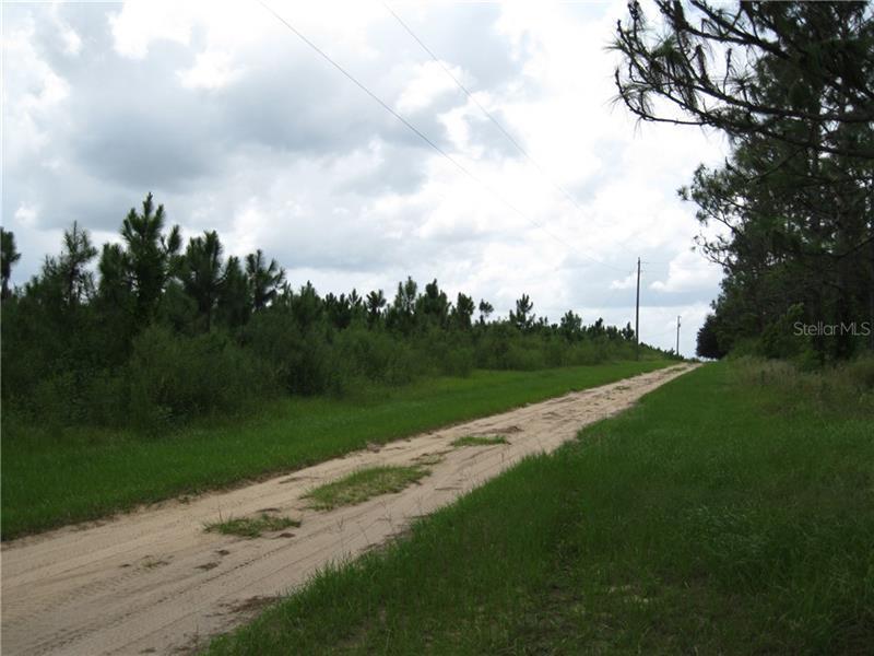 SANDY RIDGE, CLERMONT, FL, 34714