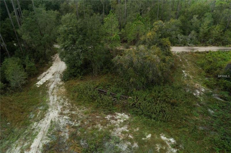 ADONIJAH, CLERMONT, FL, 34714