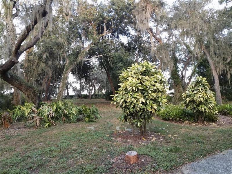 1216 S SCENIC, FROSTPROOF, FL, 33843