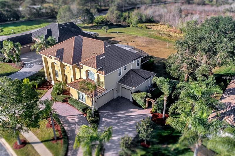 O5554599 Windermere Grande Windermere, Real Estate  Homes, Condos, For Sale Windermere Grande Properties (FL)