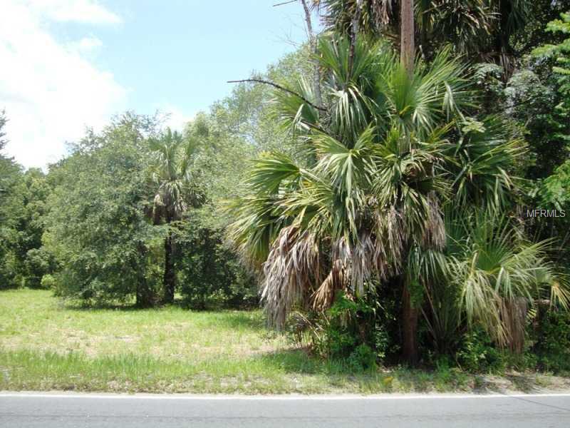 SR 46/ 435,  MT PLYMOUTH, FL